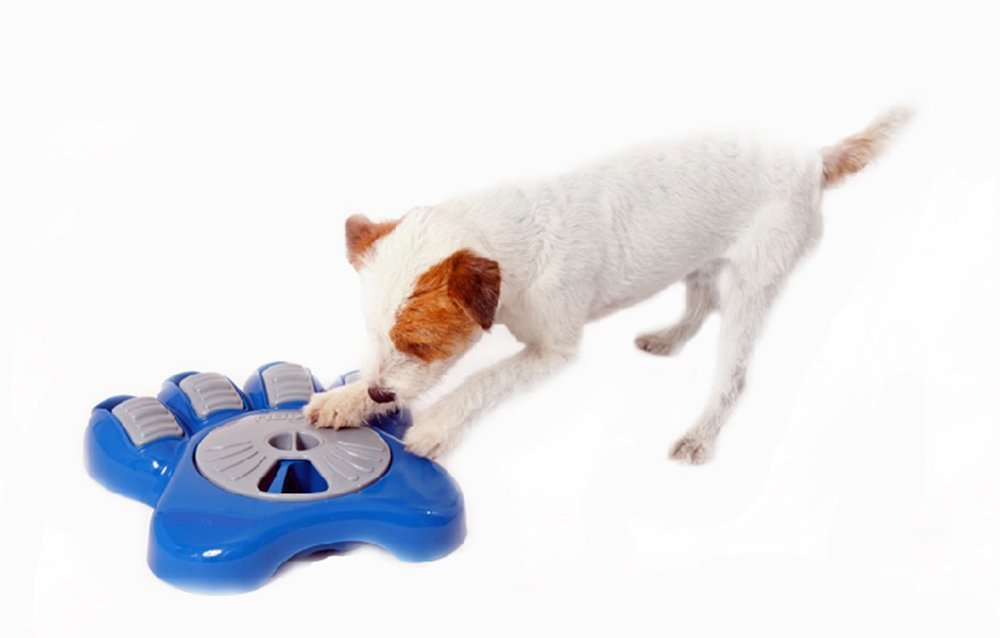 Best Interactive Dog Toys And Feeders Best Rated