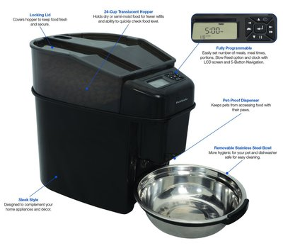 Best Rated Automatic Dog Feeder