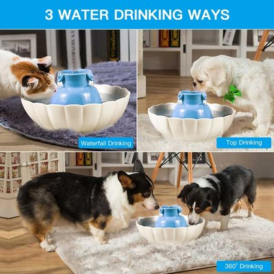 Best Outdoor Automatic Dog Water Fountain Best Rated